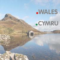 New gTLDs .WALES and .CYMRU Launch : Register .WALES Domains : Register .CYMRU Domains - .WALES TLD Logo - .CYMRU TLD Logo