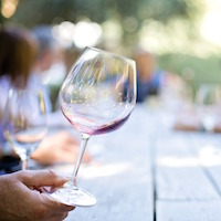 .WINE & .VIN Domain Registration Now Available!