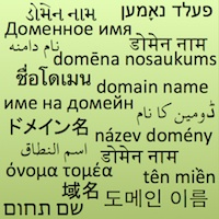 Internationalized Domain Name .WS Sale