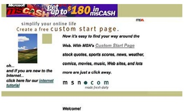 MSN Website 1995