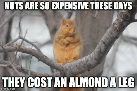 Nuts Are So Expensive These Days They Cost an Almond a Leg! - Almond Day Pun