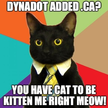 Dynadot Added .CA? You Have Cat to Be Kitten Me Right Meow! - Business Cat Meme
