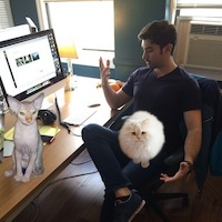 Dynadot is Now a Cat Friendly Office! - April Fools' Day Office Prank