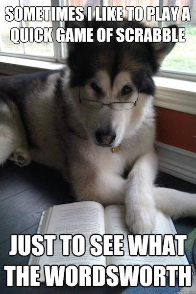 Condescending Literary Pun Dog Meme - Scrabble Day Sunday Punday