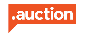 .AUCTION Domain Logo